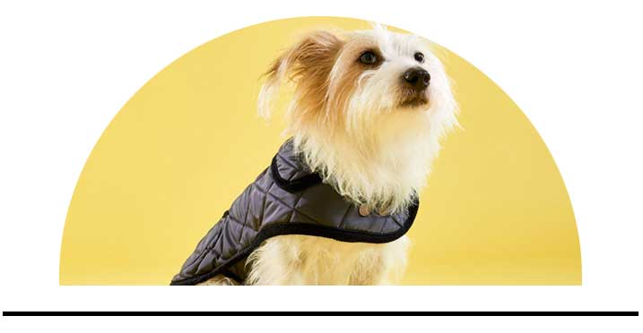 Kabáty pro psy luxusní módní kvalitní
