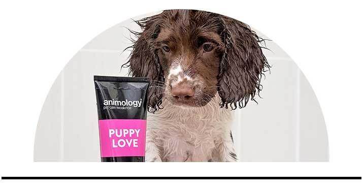Šampony pro psy kvalitní přírodní bez chemie