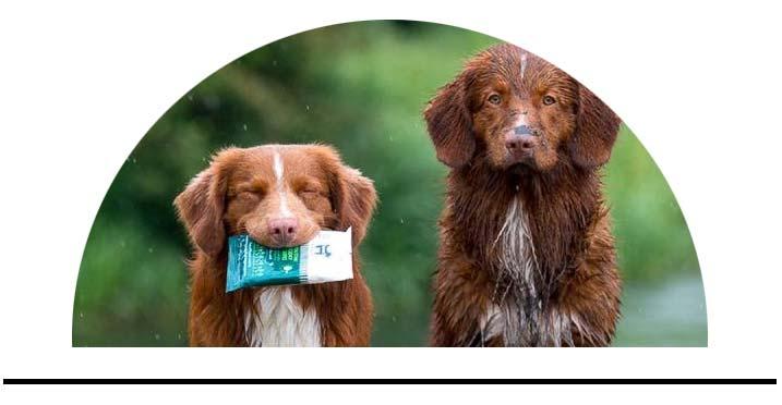Vlhčené vlhké ubrousky pro psy