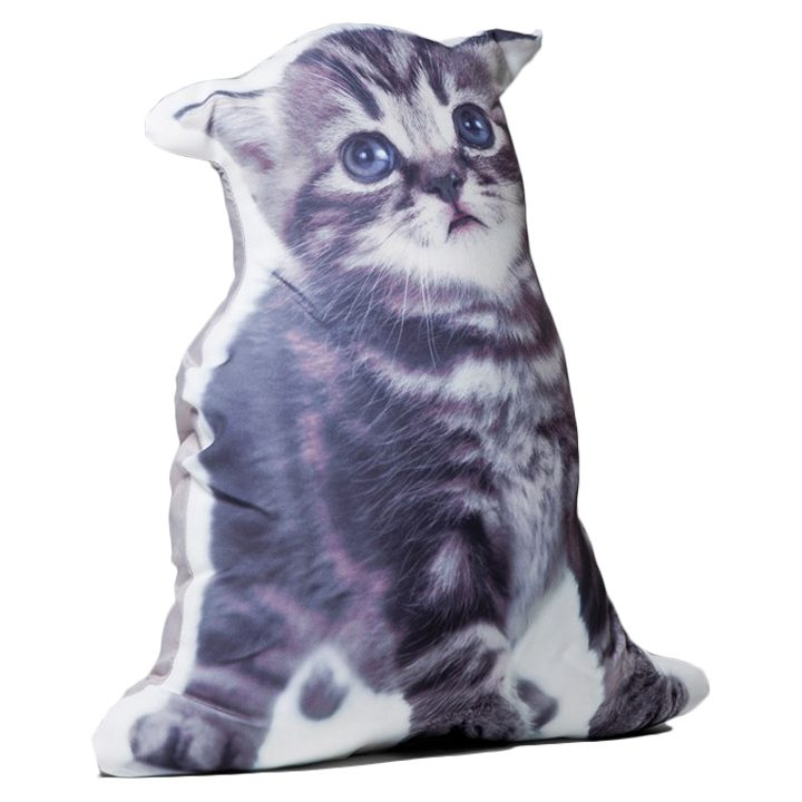 3D polštář Kočka Micka