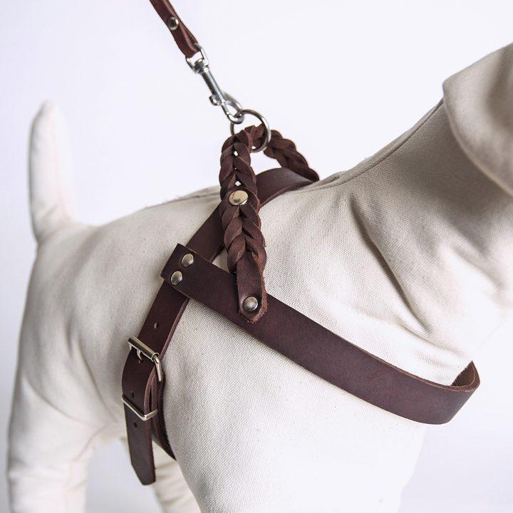 Kožený postroj pro psa Central Park Seddle Brown