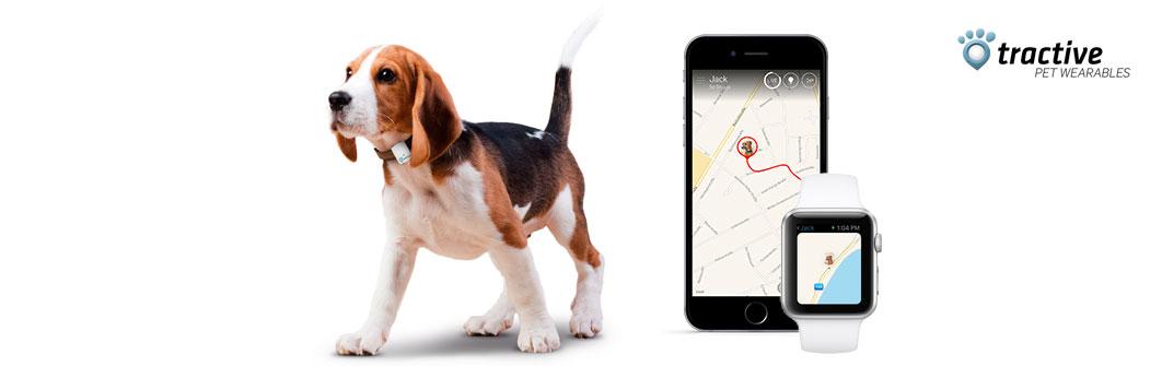 Chytrá elektronika pro psy GPS