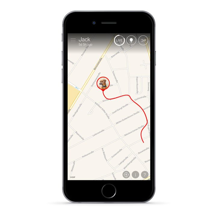 Tractive GPS pro psy
