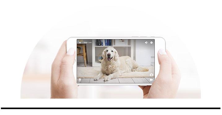 GPS smart chytrá elektronika kamery pro psy