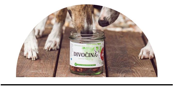 Pamlsky pro psy zdravé bez chemie