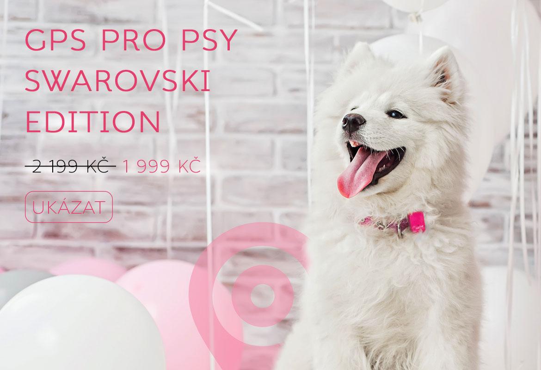 GPS pro psy SWAROVSKI EDITION