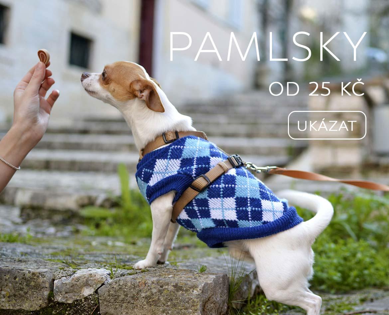 Pamlsky pro psy zdravé