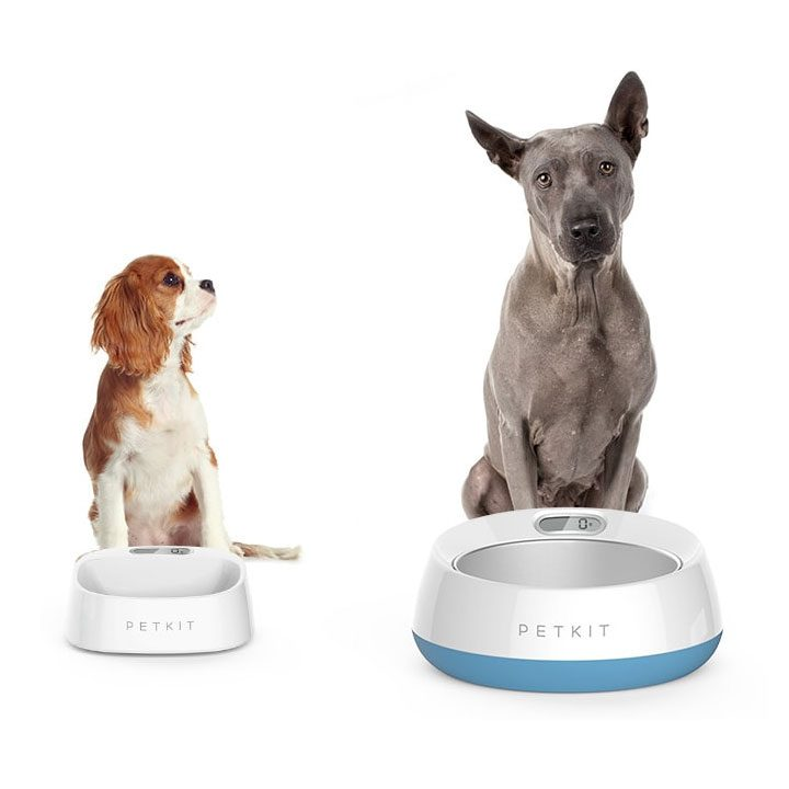 PetKit Fresh Chytrá miska pro psy