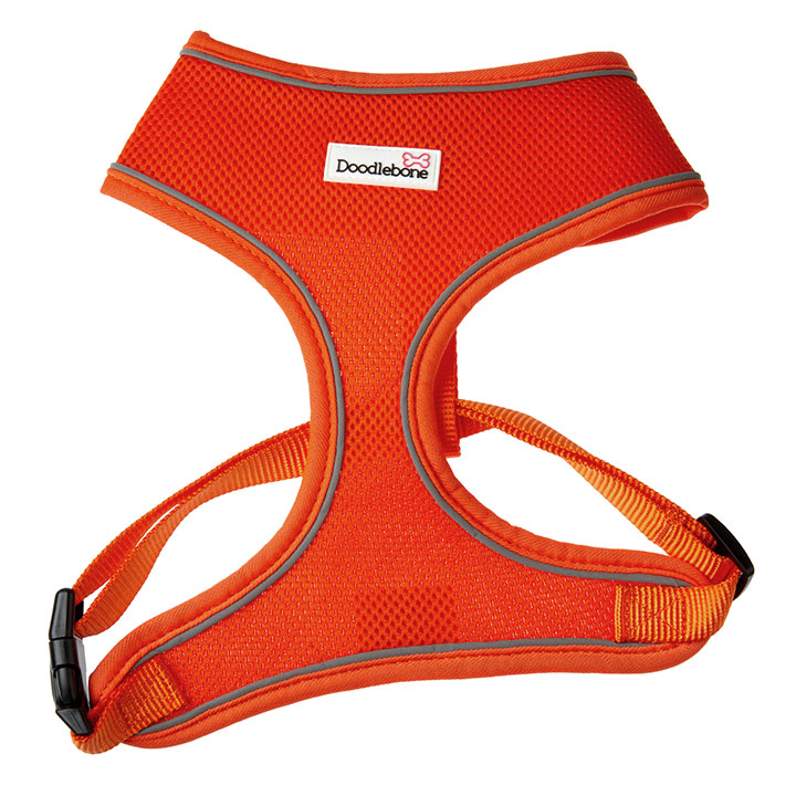 Doodlebone Postroj Airmesh Orange