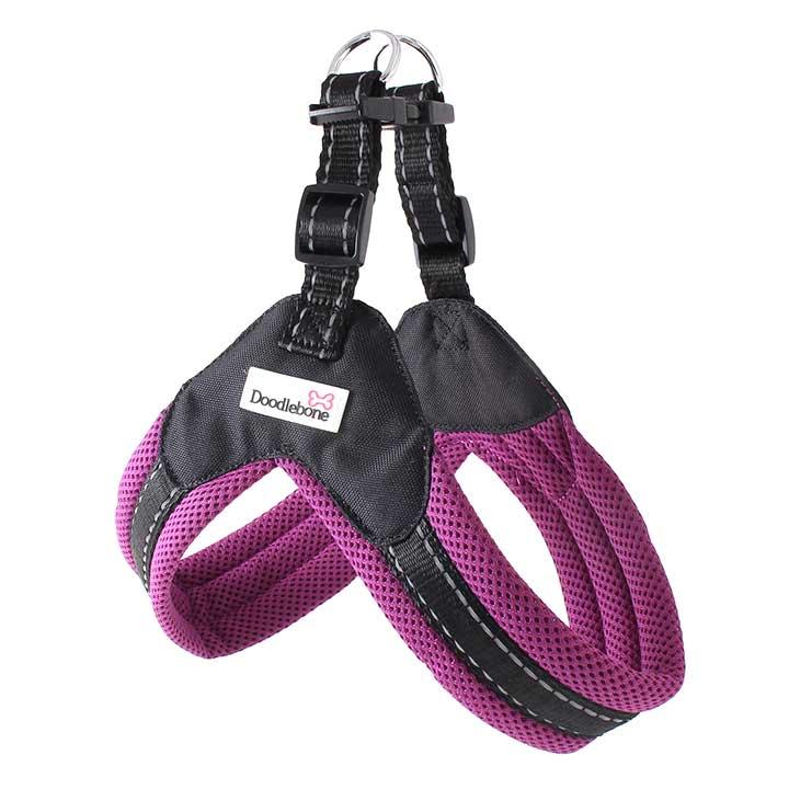 Postroj Boomerang Purple pro psy pre psov Doodlebone
