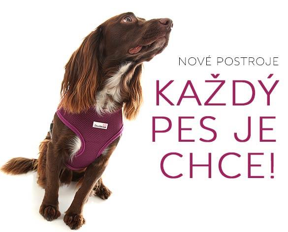 postroje kšíry pro psy