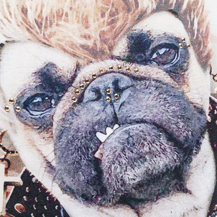 Polštář Rockstar Dog polštář se psem buldok mops buldoček
