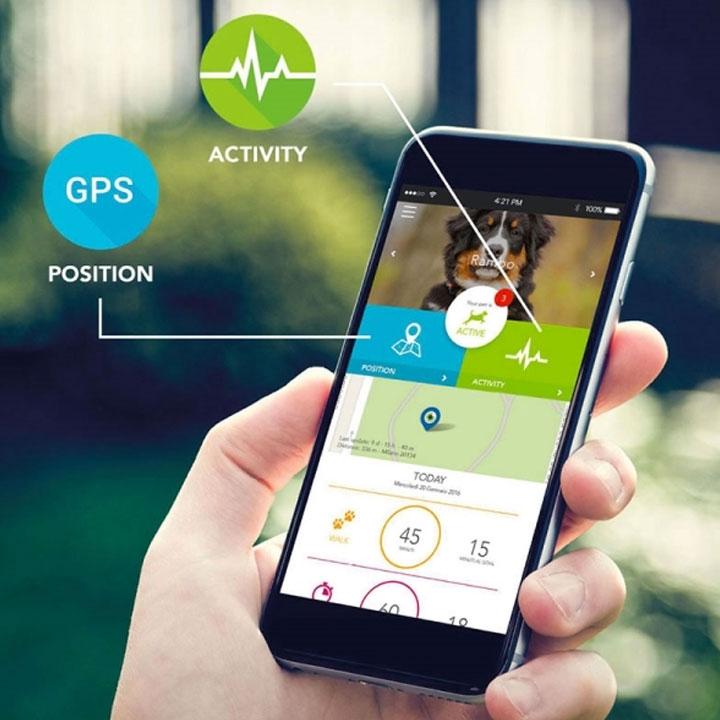 Kippy Vita GPS pro psy lokátor