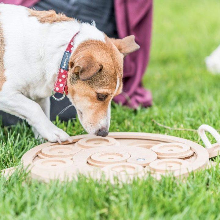 Logická hra Rolls Doglog pro psy hlavolamy