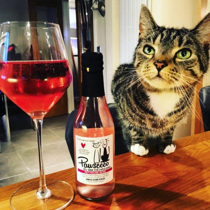 Pawsecco Pet-House Rose víno prosecco pro psy a kočky