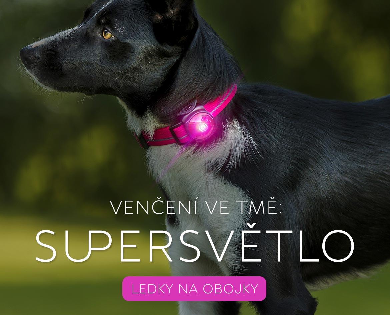 LED světlo obojek pro psy kvalitní přívěsek
