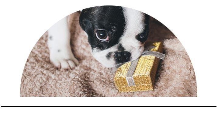 Dárkové balíčky pro psy