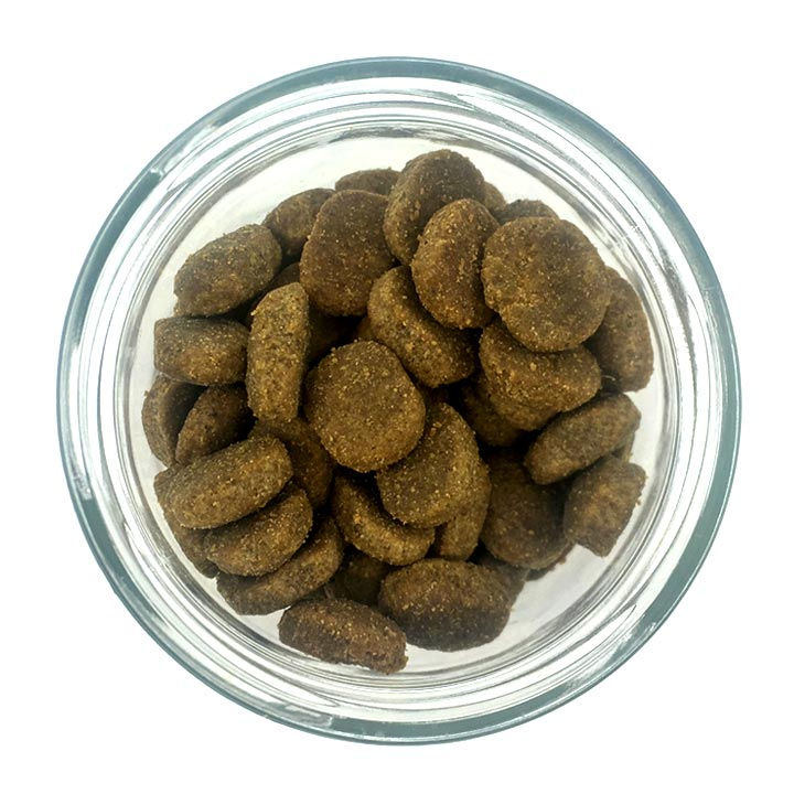 Hmyzí granule pro psy, intolerance alergie na maso