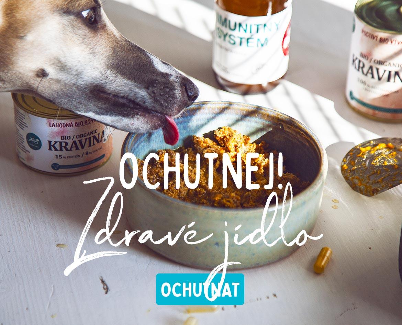 Zdravé jídlo pro psy bez chemie