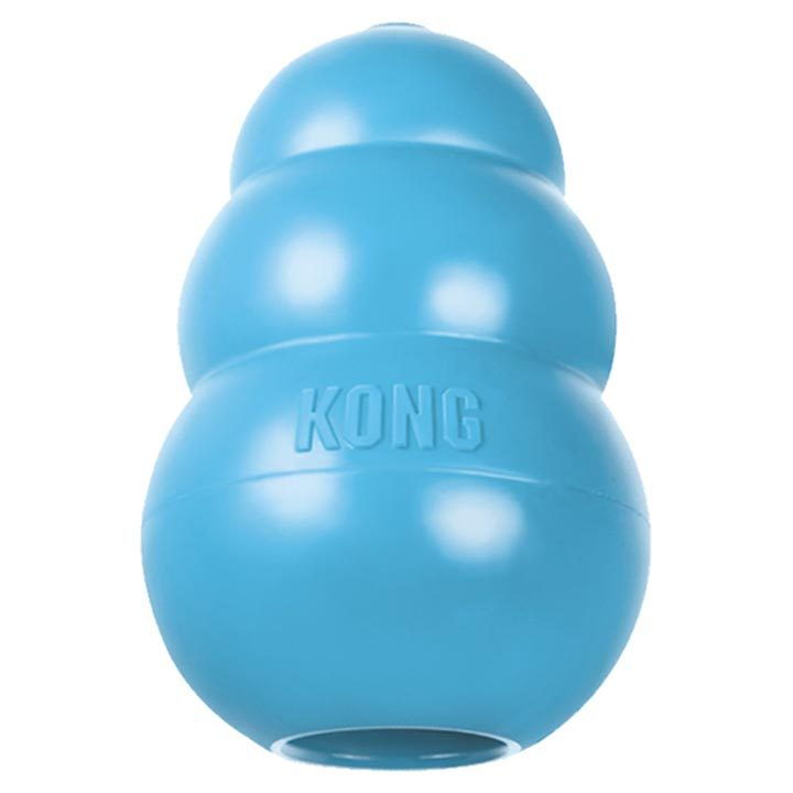 Nezničitelná hračka Kong Blue pro štěňata
