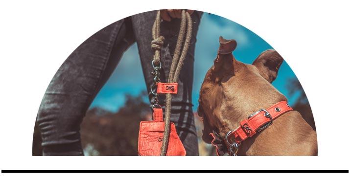 Přepínací nastavitelná prodlužovací vodítko pro psy přes rameno