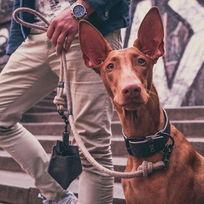 Kapsa Piña Black na sáčky pamlskovník Funky Dog