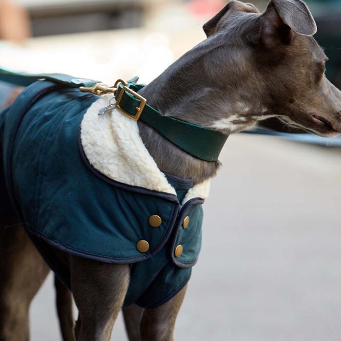 Kabát Indigo Blue luxusní obleček pro psy