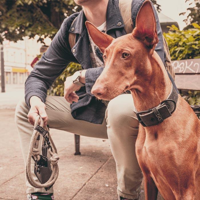Kolekce Pina pro psy, z etických materiálů, eco-friendly, hand made