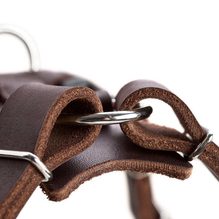 Postroj Aalborg Cognac Hunter Y-postroj pro psy kožený luxusní