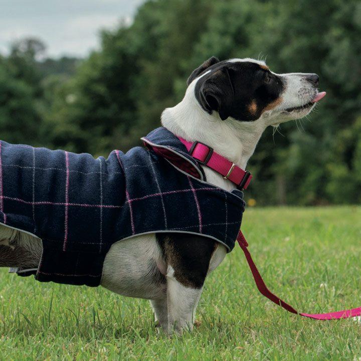Oblečky pro psy Doodlebone oboustranná bunda obleček luxusní