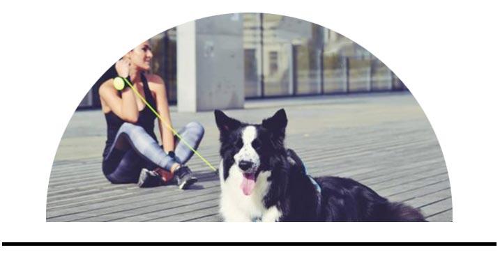 Hands-free vodítka Lishinu vodítko na ruku pro střední psy
