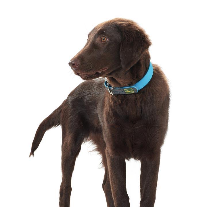 Hunter Obojek pro psy do vody Convenience
