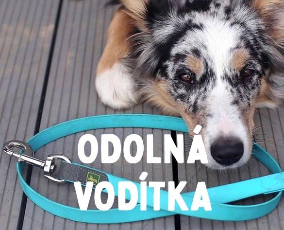 Odolná kvalitní vodítka pro psy