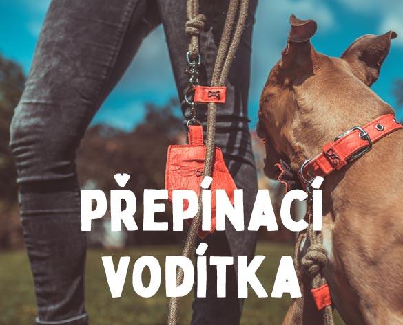 Přepínací nastavitelná vodítka pro psy