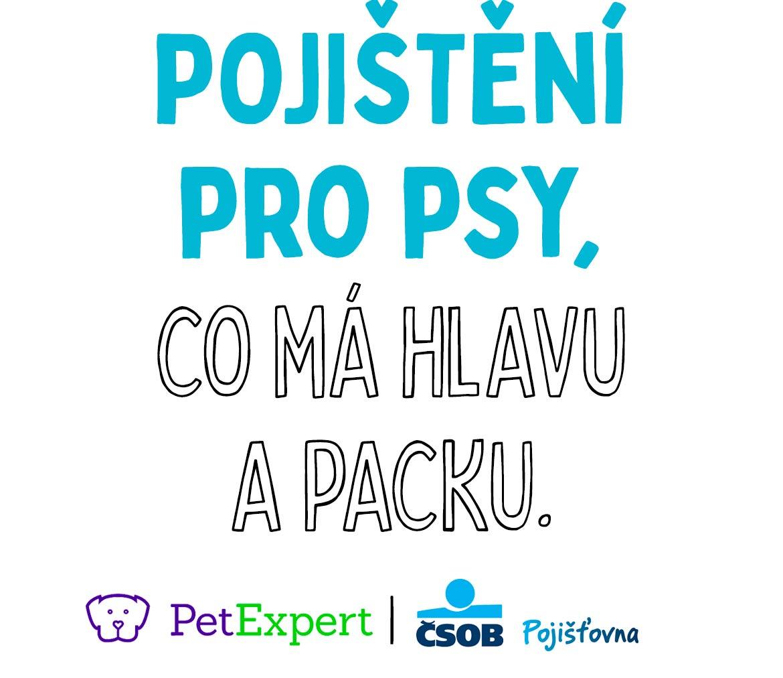 Pojištění pro psy