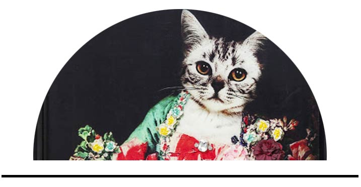 Dekorace s tématikou koček