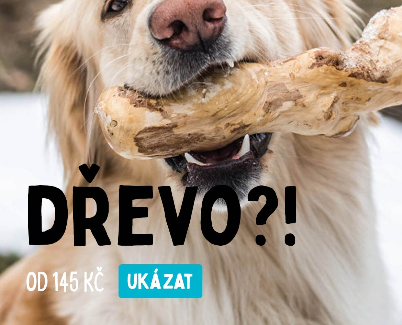 Dřevo pro psy