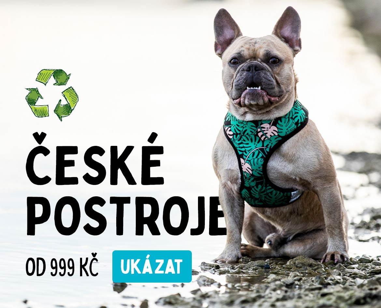 Rebruns české postroje pro psy