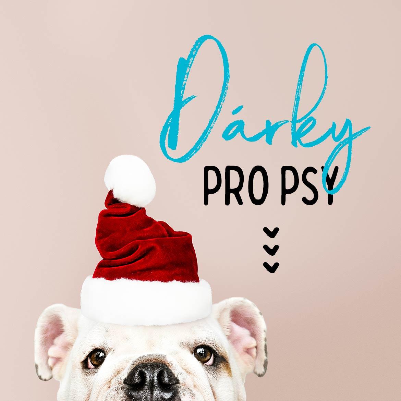 Nejlepší vánoční dárky pro psy 2020