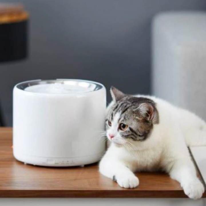 PetKit Eversweet 3 Fontána pro psy a kočky chytrá designová na vodu