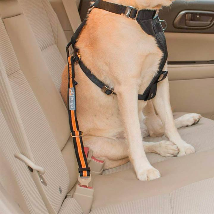 Kurgo Bezpečnostní pás pro psy do auta