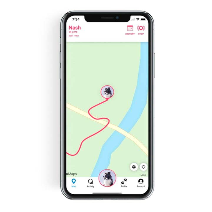 Tractive 4 GPS pro psy
