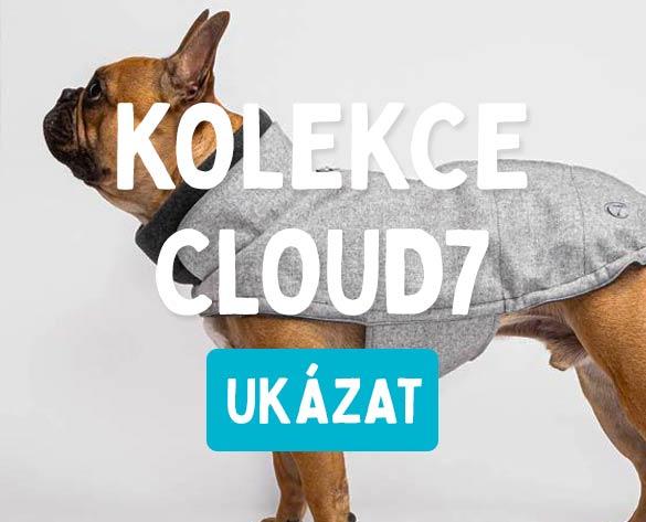 Cloud7 pro psy